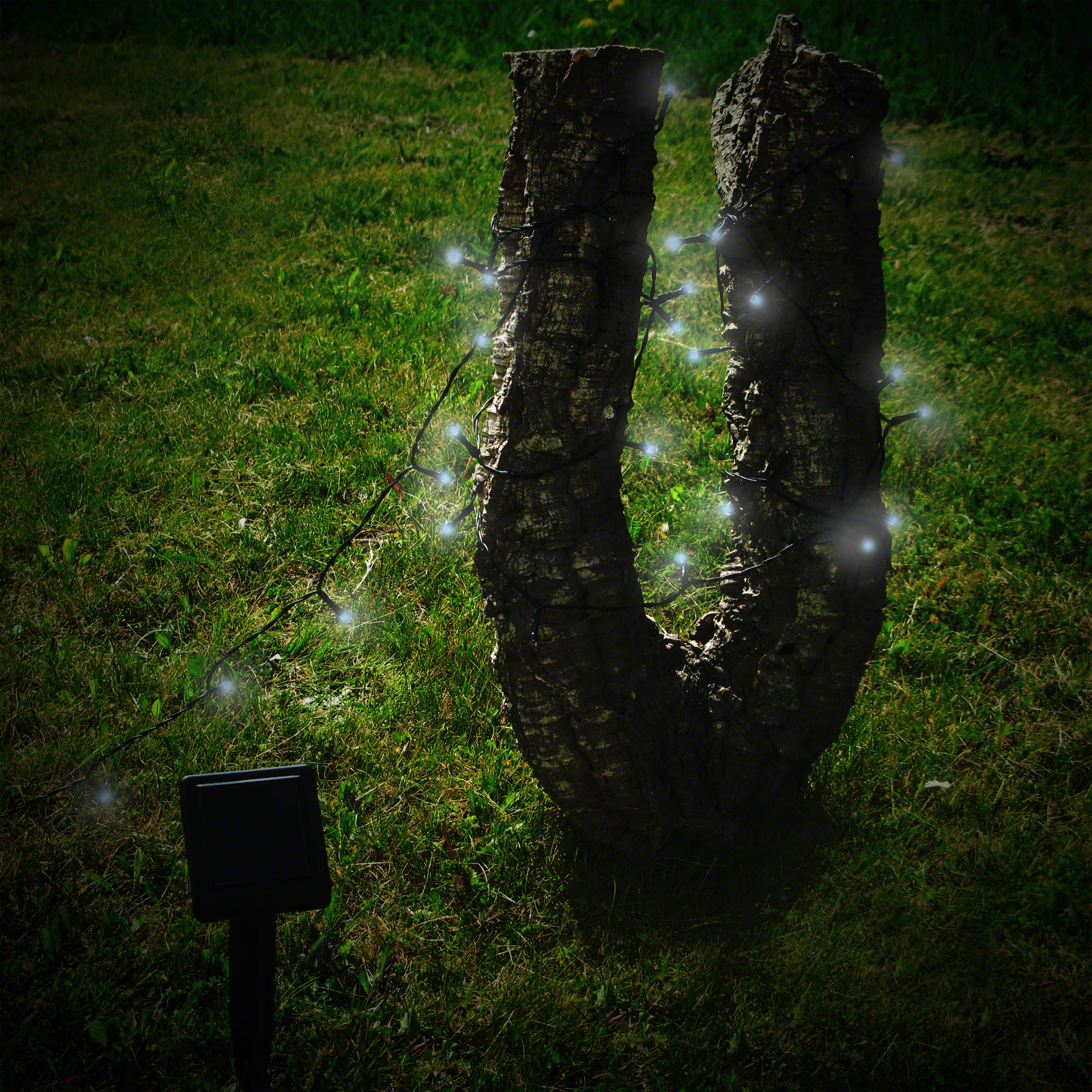 100 White LED Solar Stringlights