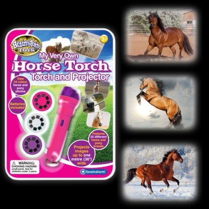 Horse Torch Amp Projector
