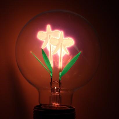 Iris Filament Lightbulb