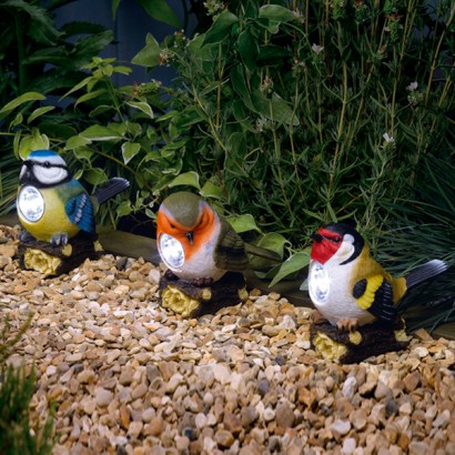 This Collection Of Cute Garden Birds Will Liven Up Your Garden With Their  Cute Personalities And Their Soft Solar Powered Light. A Kooky Bird  Spotlight Set, ...