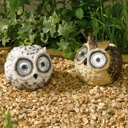 Owl solar light next