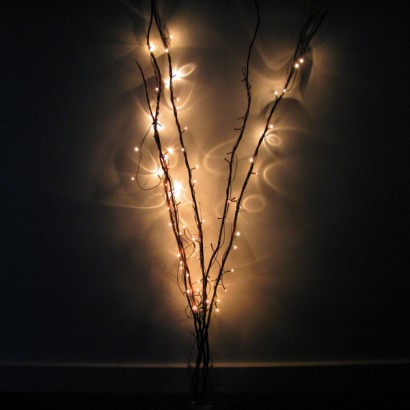 Natural twig lights