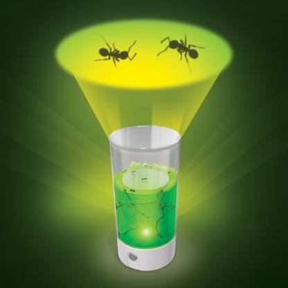 uncle milton ant farm instructions
