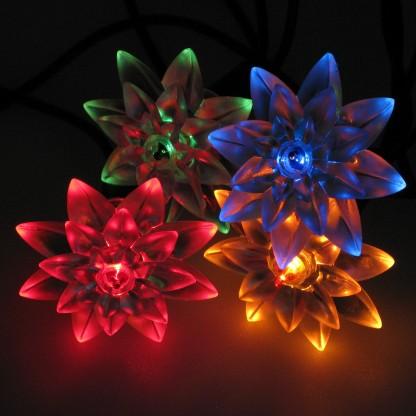 Multi Coloured Flower Fairy Lights