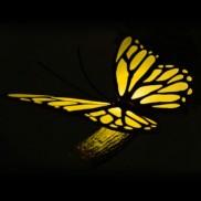 3D FX Butterfly Deco Light