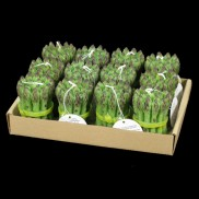 Asparagus Candle Tray