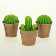 Cactus Candles (Single)