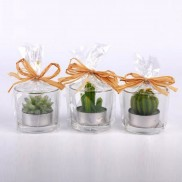 Cactus Tealights (3 Pack)