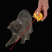 Laser Fun for Cats