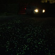 Glow in the Dark Pebbles and Gravel