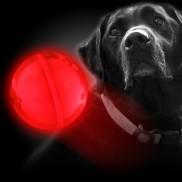 Glow Dog Ball