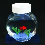 Fincredible Aquarium
