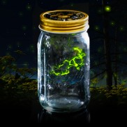Firefly Jar