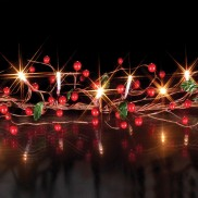 Garland Bead Lights