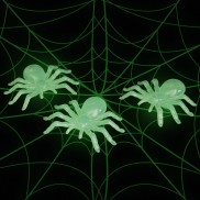 Glow in the Dark Spider (3 Pack)