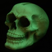 Glow Skull Money Box