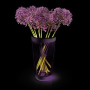 Philips Colour Change Vase