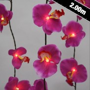 Purple Orchid String Lights