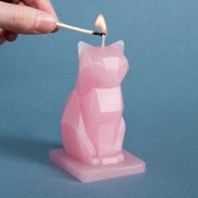 Pyro Pet Sparks Cat Candles (2 Pack)