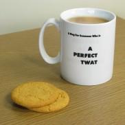 A Perfect T**t Heat Change Mug