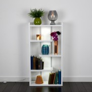 Scholar Light Up Book Shelf (21688)