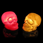 Skull Lamp