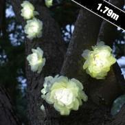 Solar Rose Stringlights