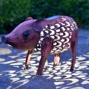 Solar Silhouette Pig