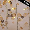 Battery Operated Coco Crystal Chic String Lights