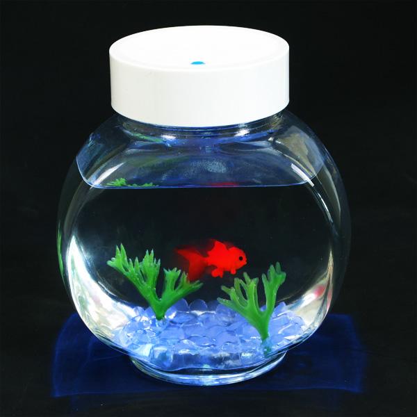 Image of Fincredible Aquarium