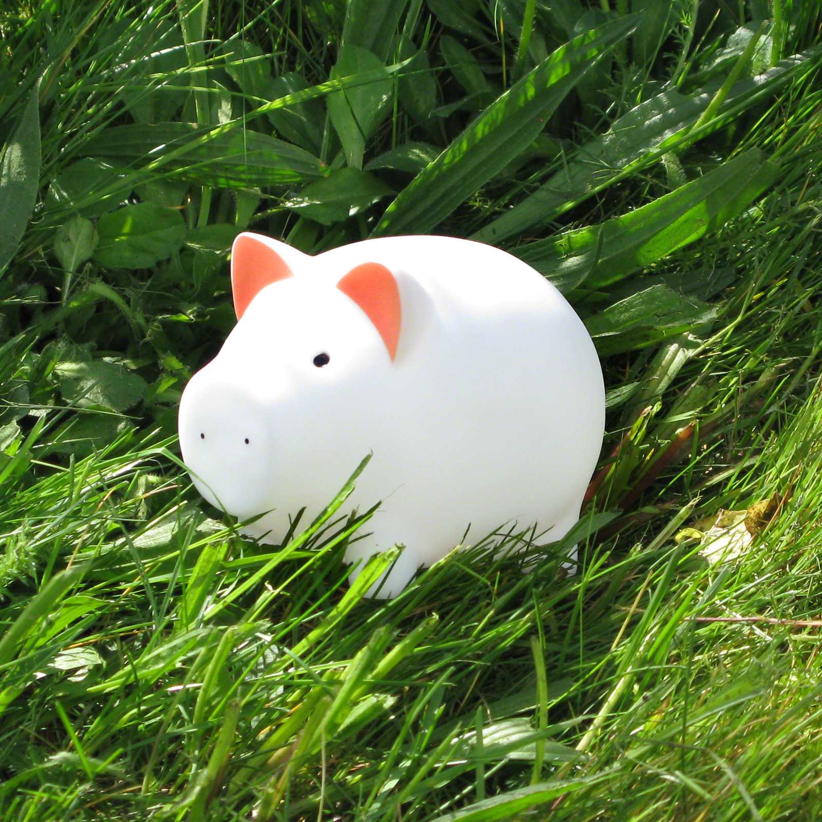 Click to view product details and reviews for Little Piggy Led Nightlight.