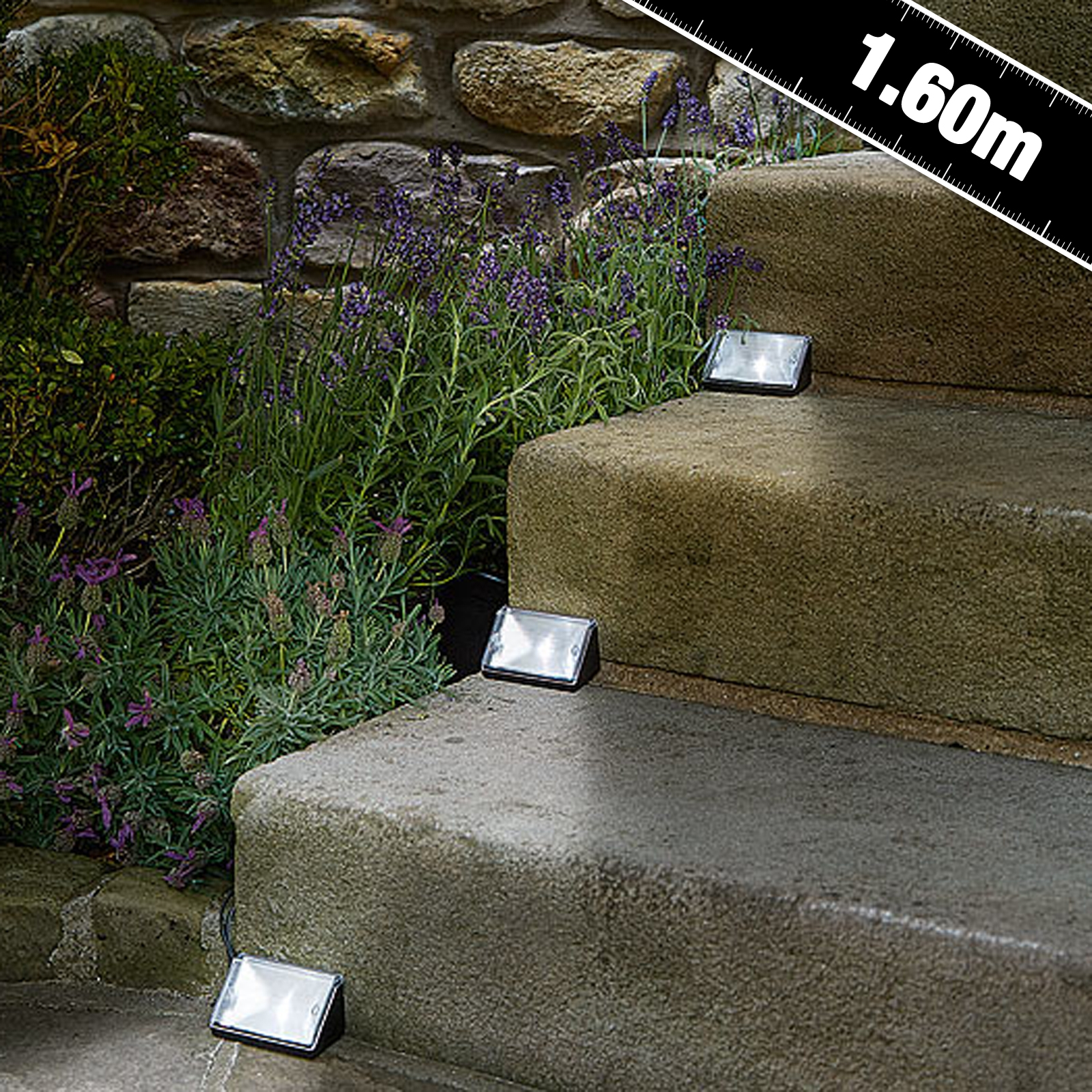 Click to view product details and reviews for Solar Step Path Markers.