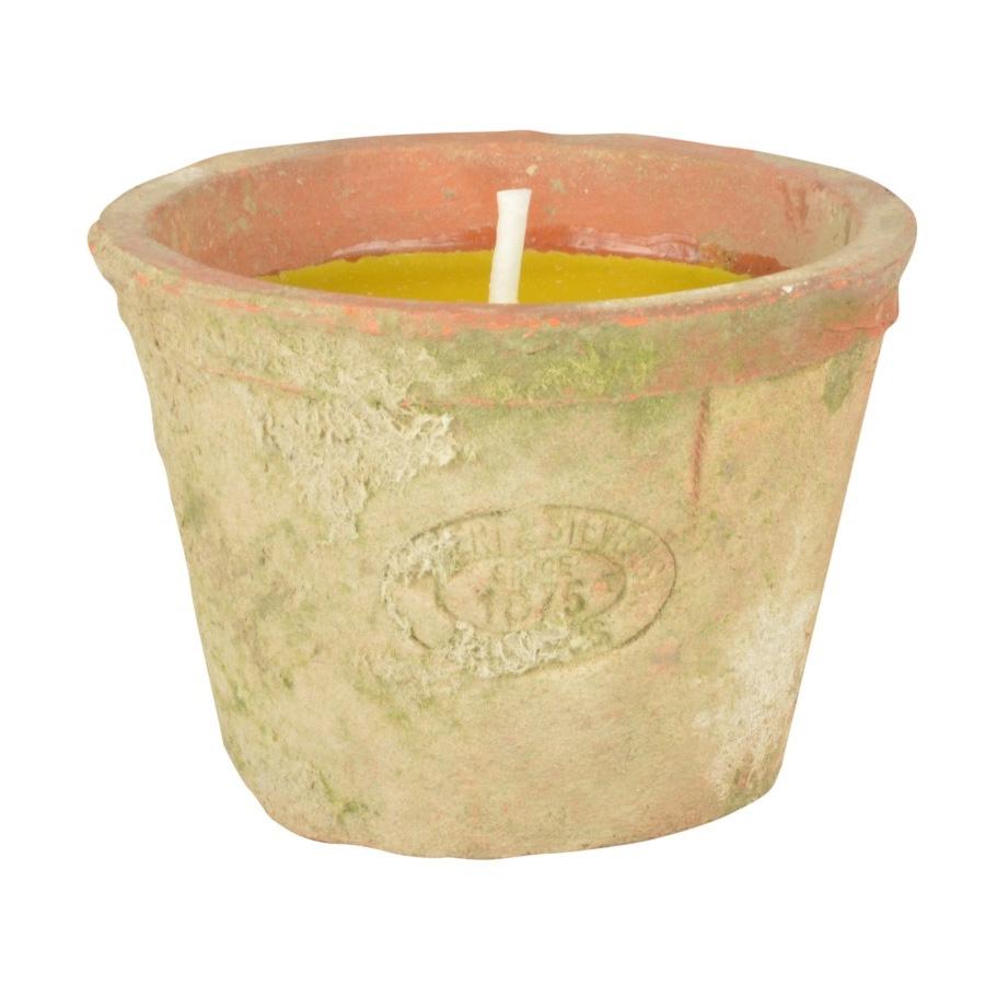Citronella Candle In Terracotta Pot Ff254