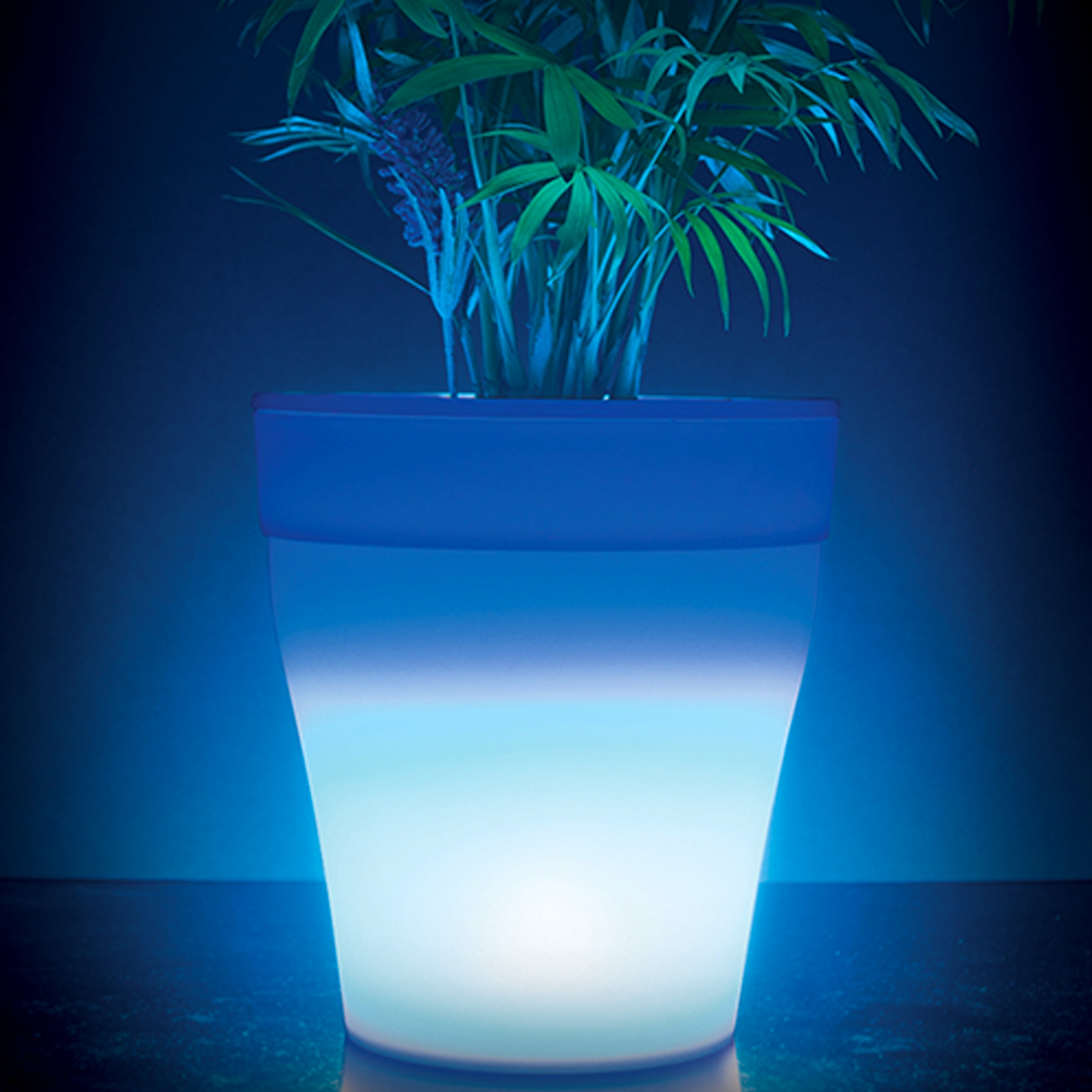Click to view product details and reviews for Colour Changing Plant Pot.