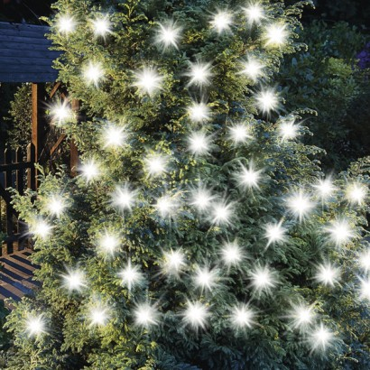 Brighten Up Your Garden With Solar Powered String Lighting That Sets Off  Your Garden Beautifully Use Decorative String Lights To Animate Key  Features Such ...