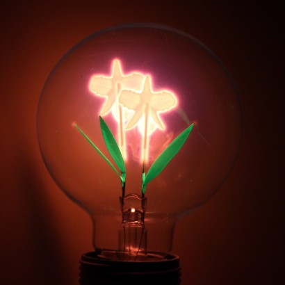 A Softer Approach To Industrial Lighting, The Iris Lightbulb Features A  Stunning Iris Shaped Filament That Shines With A Gentle Glow. Read More.