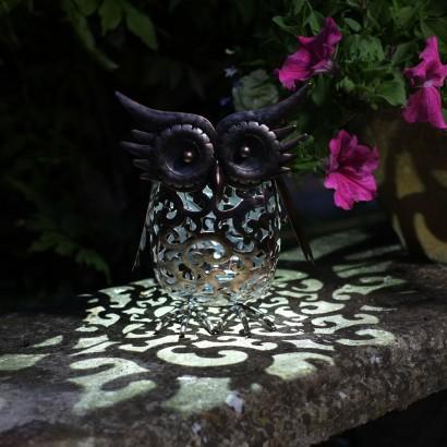 Captivating Solar Scroll Owl