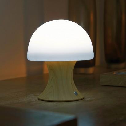 Colour Change Silicone Sensory Mushroom Lamp