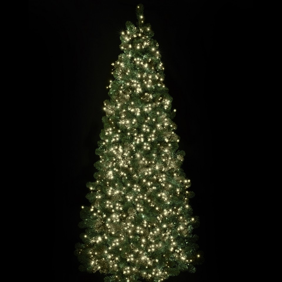 1500 Warm White Treebrights with Timer