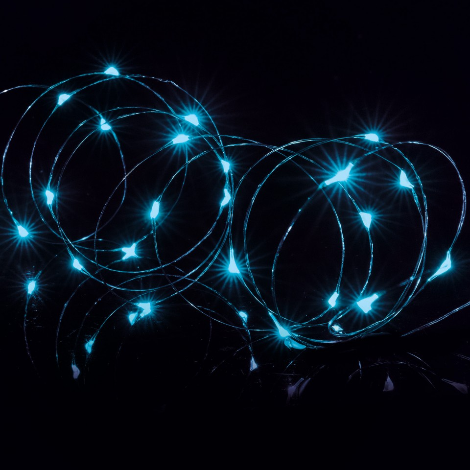 Blue 25 LED Wire Lights with Timer