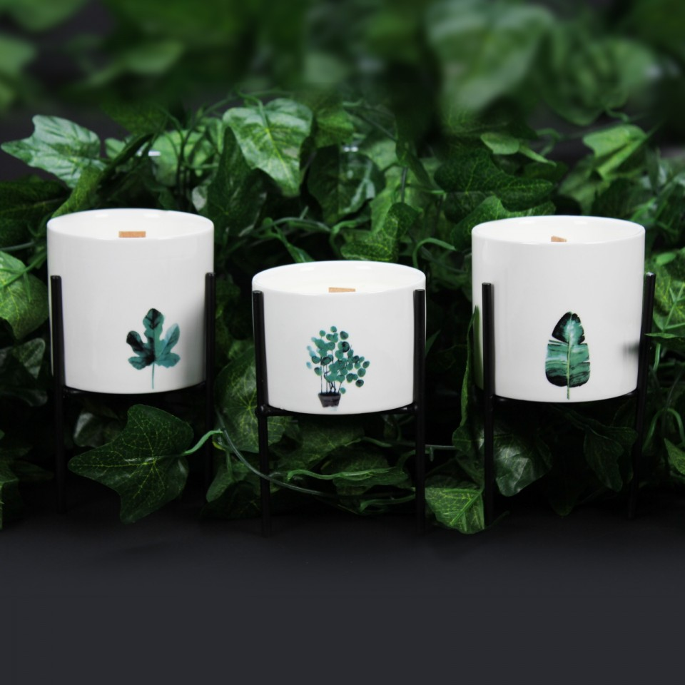 3 x Botanical Soy Candles with Wooden Wick