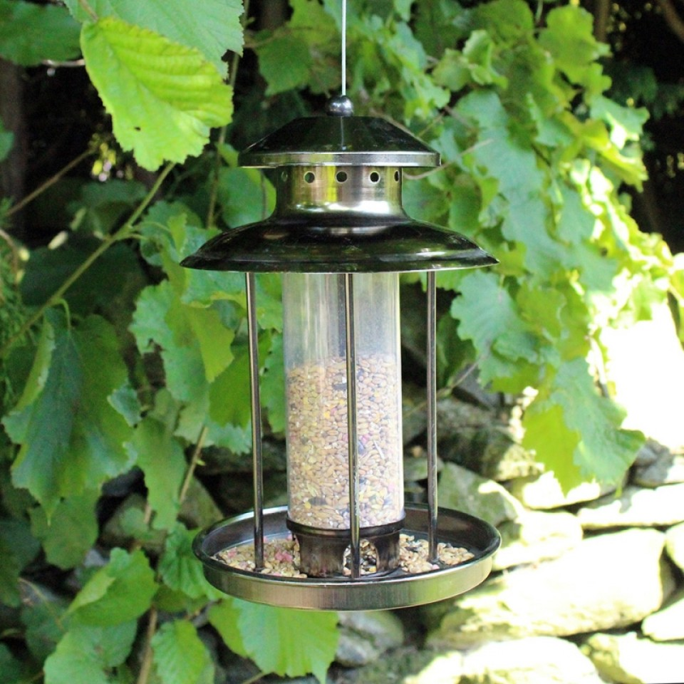 Deluxe Lantern Bird Seed Feeder