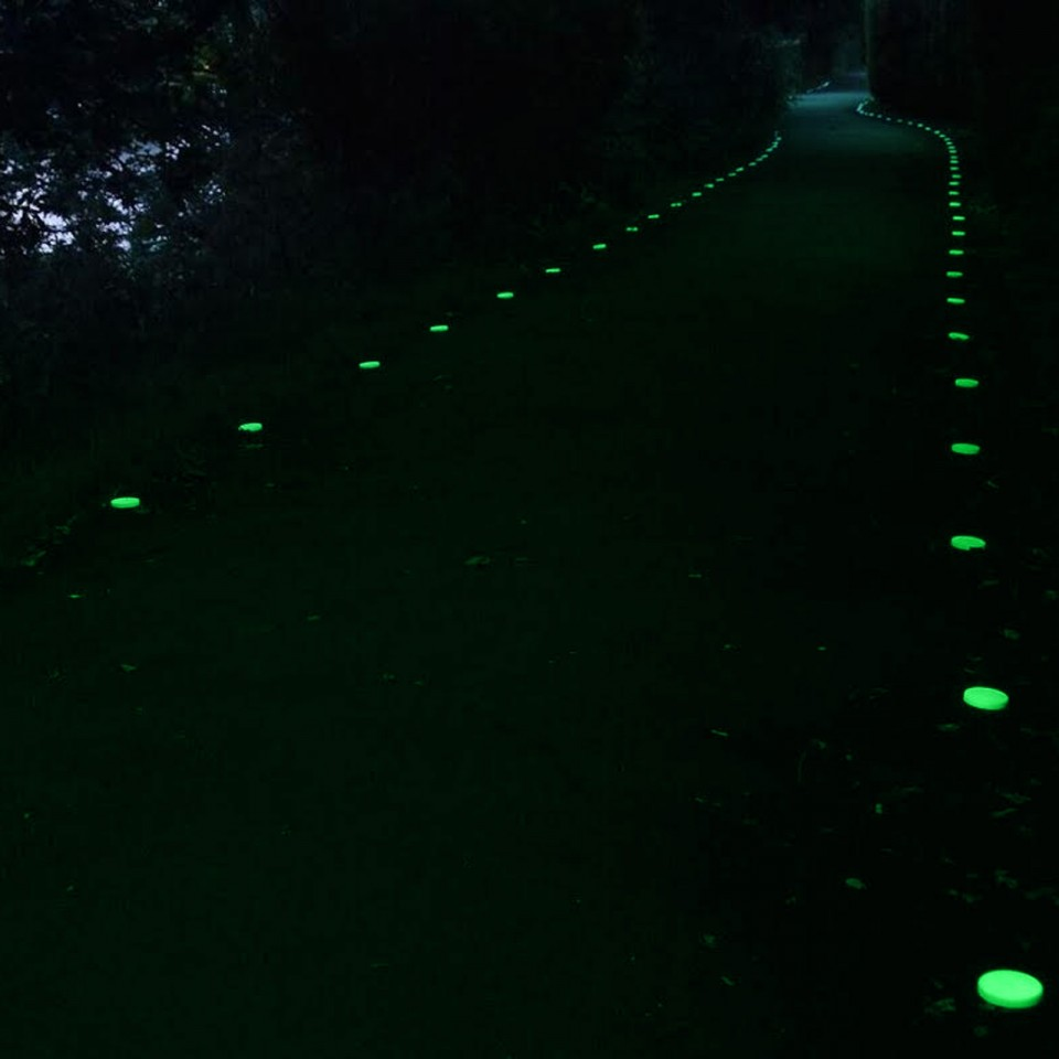 Eco Disc - Glow in the Dark Driveway or Path Markers