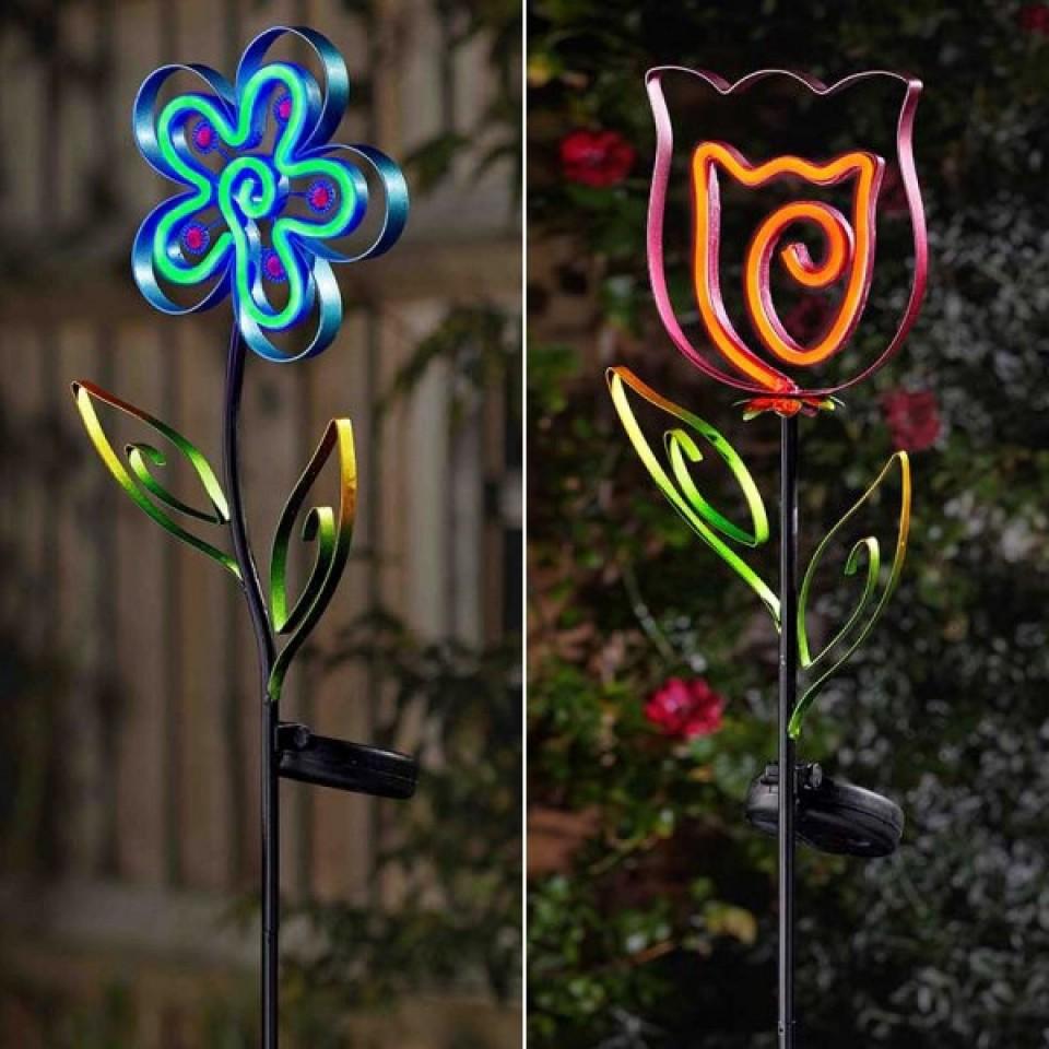 Solar Neon Esque Bloom