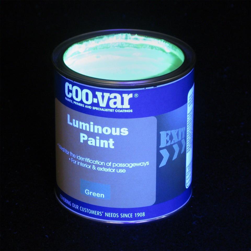 Luminous Glow Paint Luminous Glow Paint - 500ml