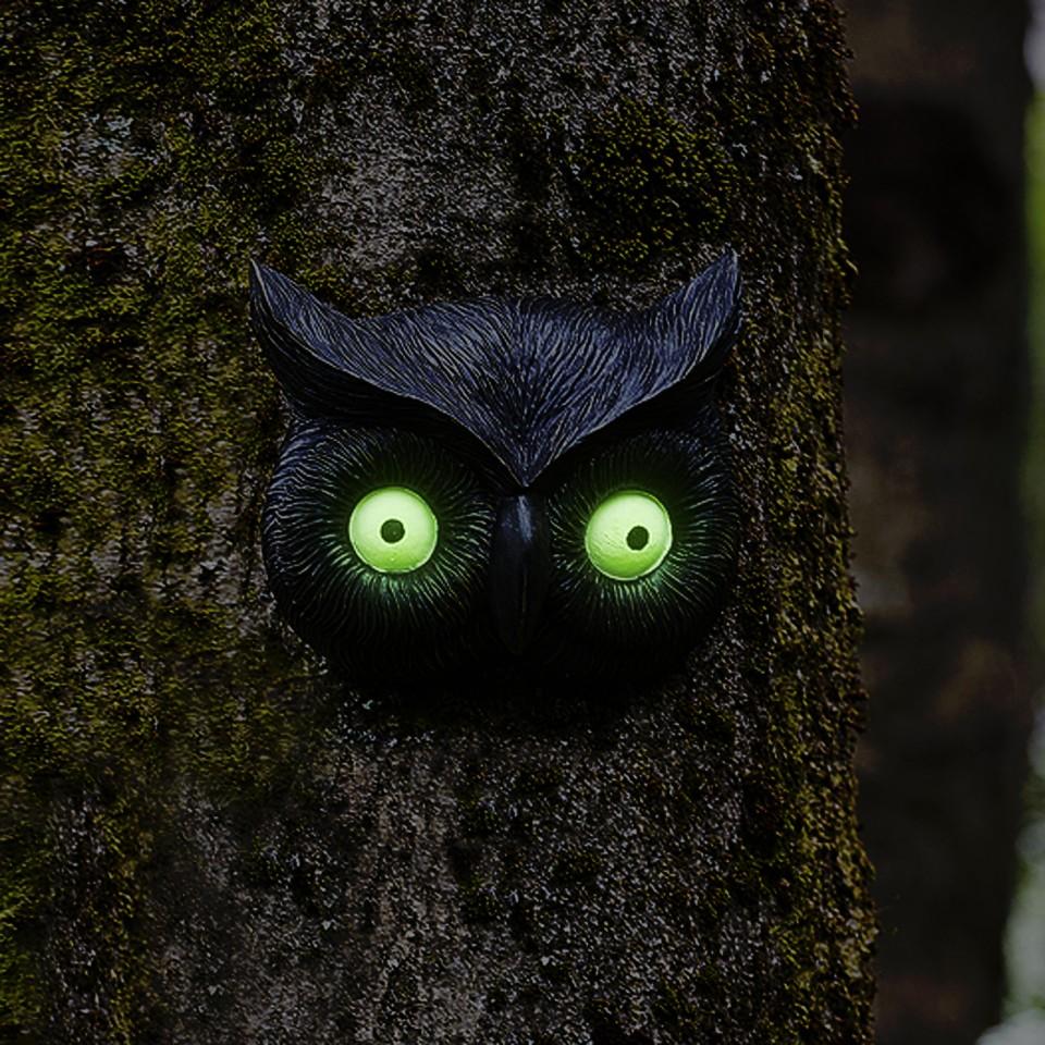 Owl Glow Eye Tree Face