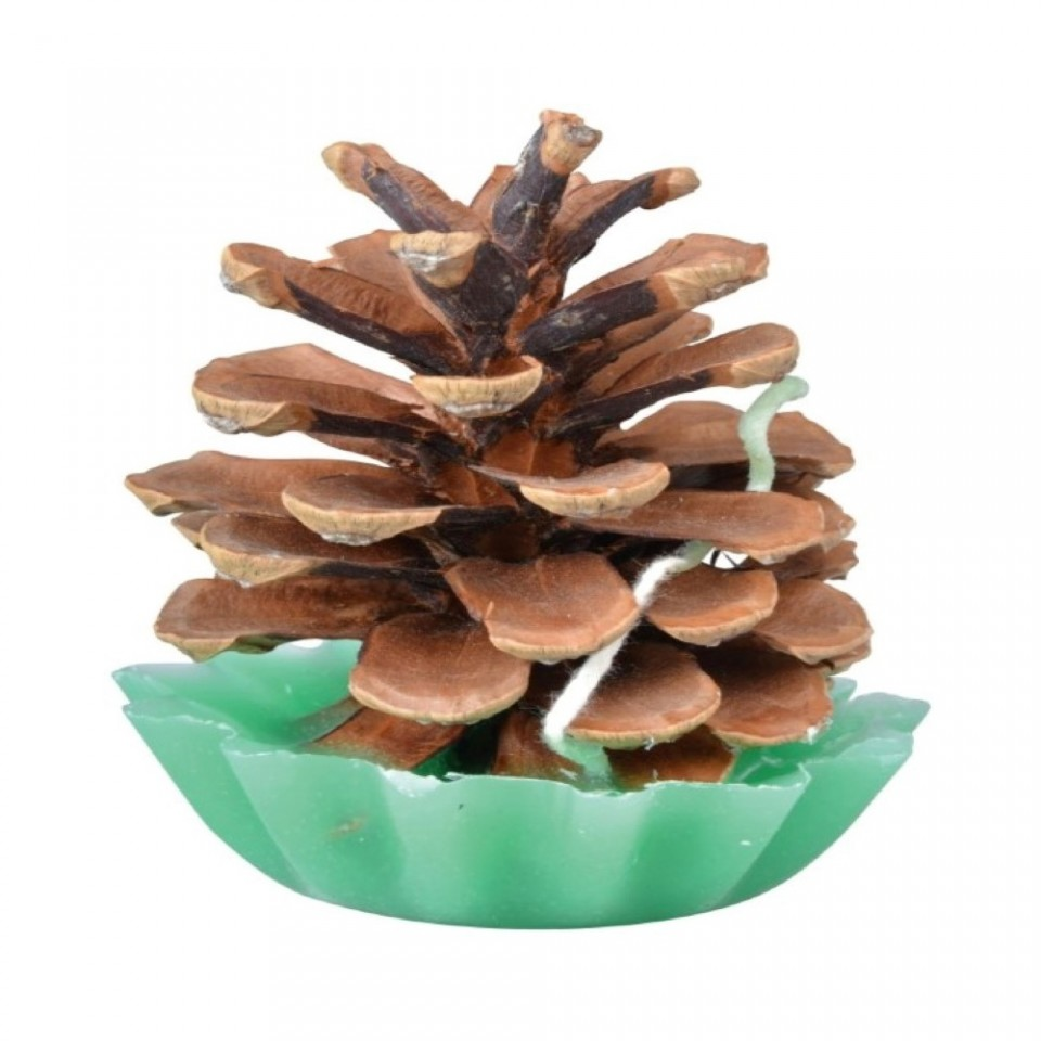 Pine Cone Fire Starters (10 pack)