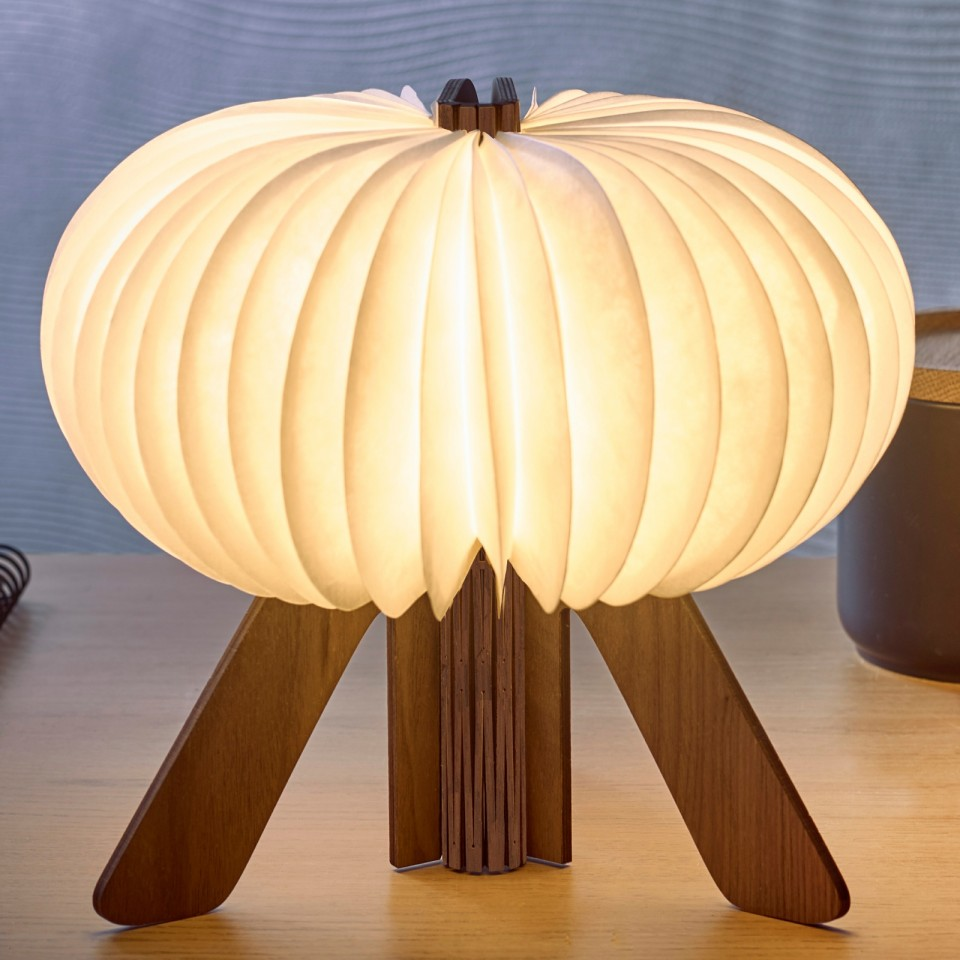 Walnut Gingko R Space Rechargeable Lamp