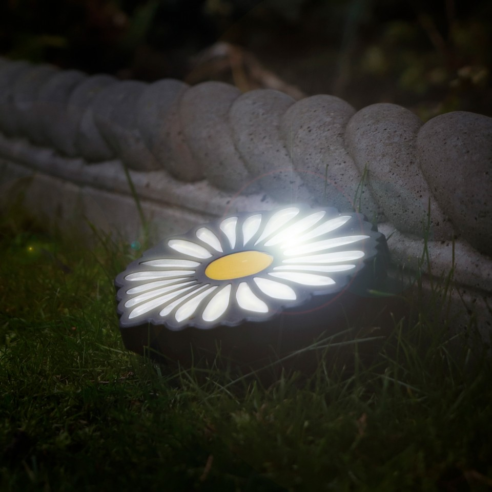 Set of 4 Solar Daisy Lights