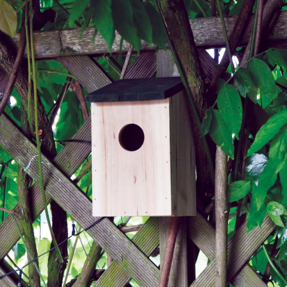 Wild Bird Nesting Box